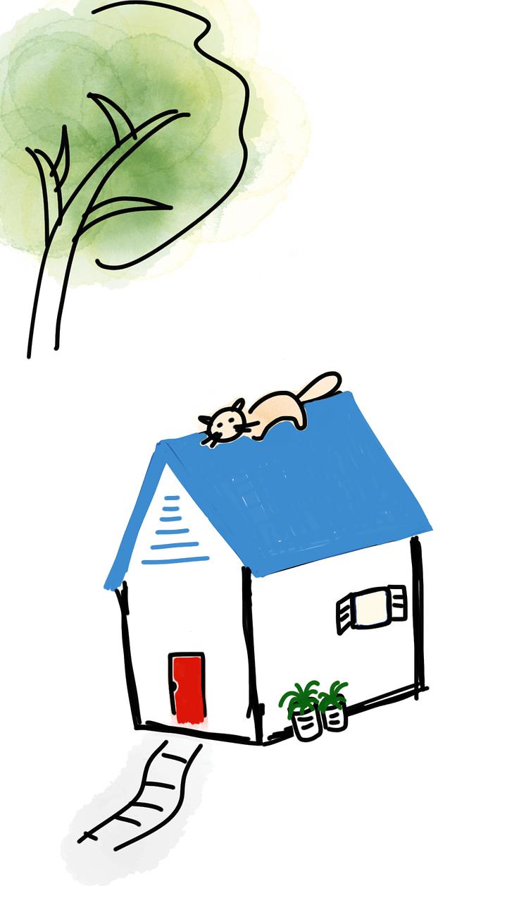 A qui confier son projet immobilier ?